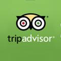 tripadvisor-rounded